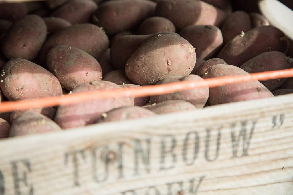 Aardappels Spruiten