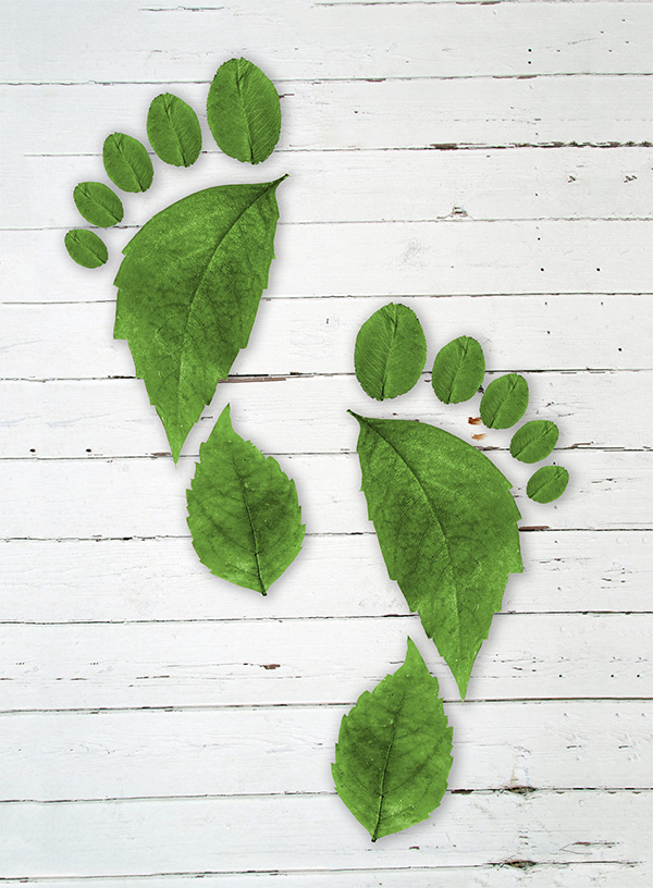 footprint, duurzaam drukken. Studio voor grafisch ontwerp, fotografie en webdesign in Harlingen, Friesland
